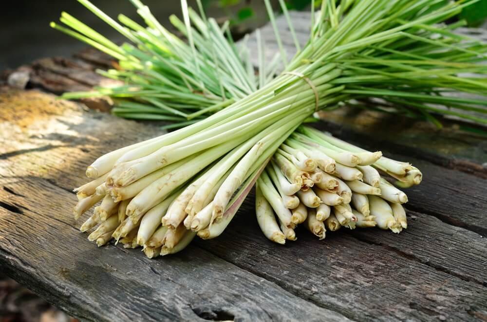 Remedios naturales para el dolor de cabeza: té de hierba de limón