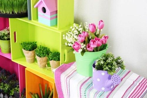 Plantas sobre muebles