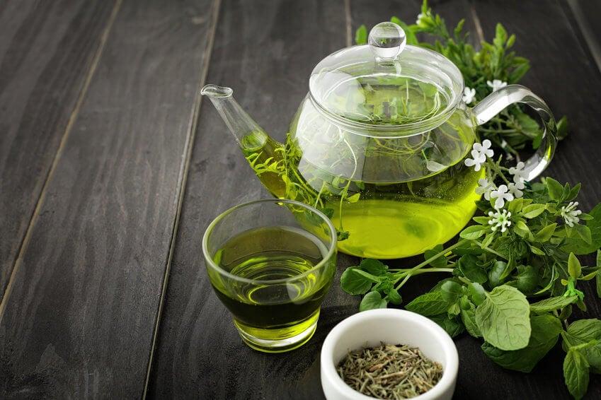 Té verde, de los mejores quemadores de grasa