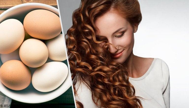 3 productos hidratantes con huevo para el pelo seco