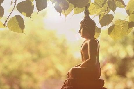 La filosofía del mindfulness y el budismo