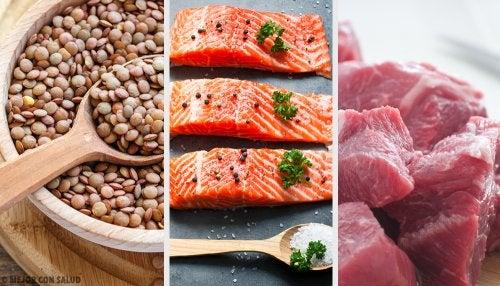 que importancia tienen las proteinas en la dieta alimenticia