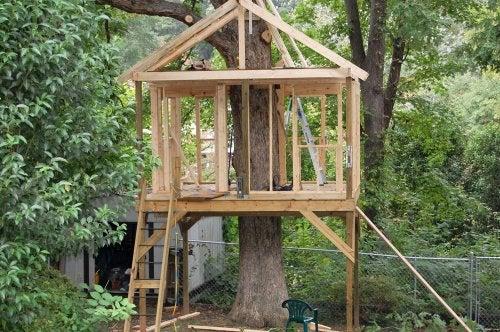 Casa en el árbol.