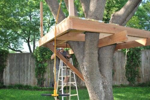 La estructura de la casa árbol.