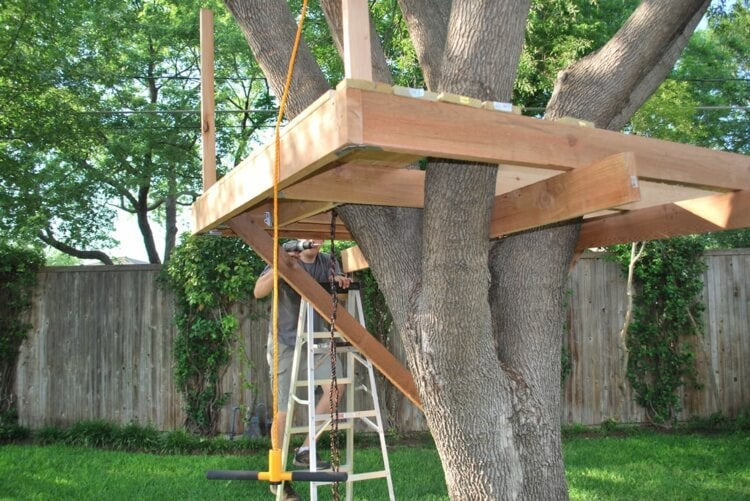 la estructura de la casa árbol