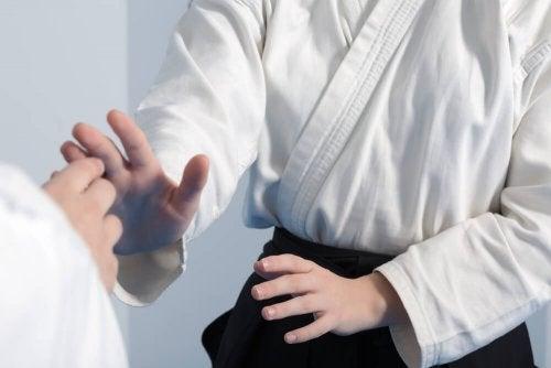 Aikido, artes marciales
