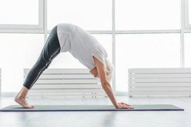 El Yoga para una persona mayor.