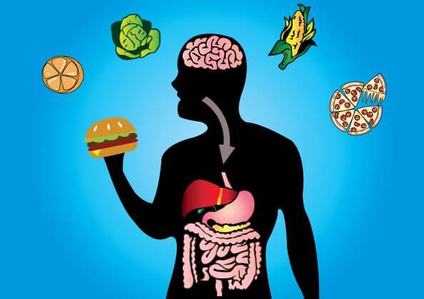 La Importancia De La Nutrición En Nuestra Vuelta A La Rutina