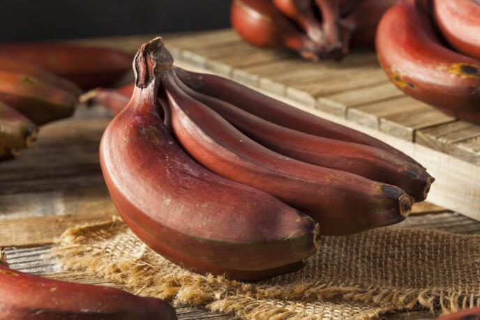 Postre de plátanos rojos maduros