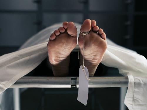 Diferencia entre autopsia y necropsia.