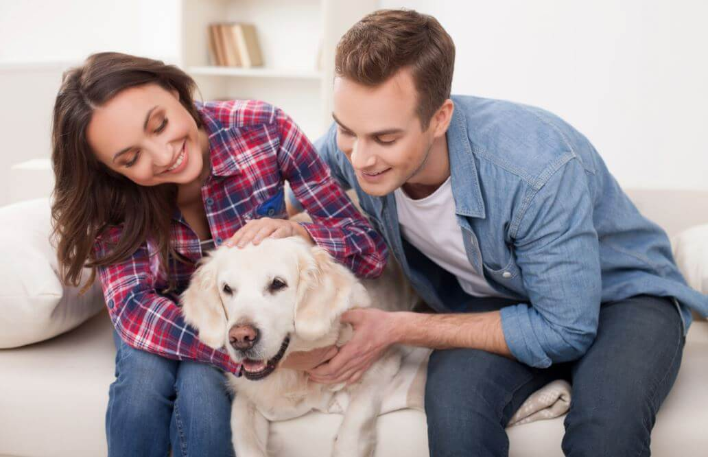 Beneficios de tener una mascota en casa.