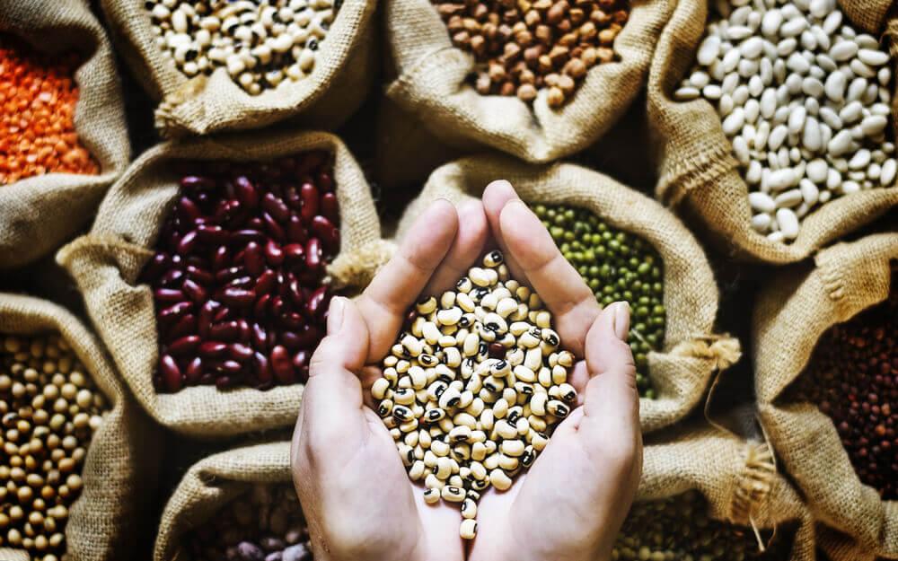 Las legumbres son una fuente esencial de fibra.