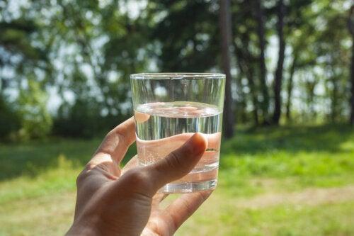 ¿Cuál es la importancia y los beneficios de mantenerse hidratado?