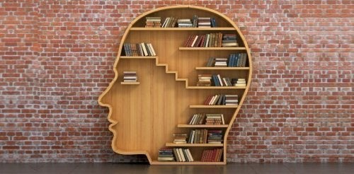 Libros y cerebro
