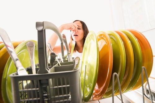 Es necesario saber qué hacer para mal olor de la tubería de la cocina.