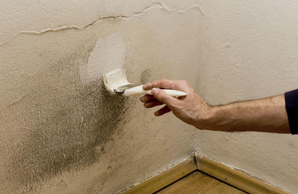 Quitar humedad en la pared.