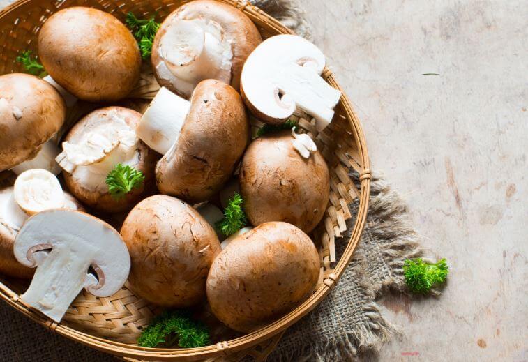 Cogumelos para preparar filé de frango gratinado