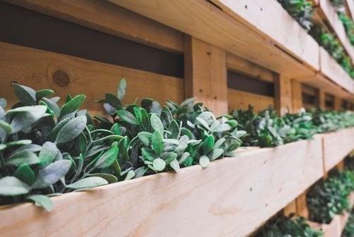 6 elementos que puedes reciclar para decorar tu jardín