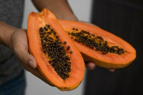 Semilla de papaya salud renal
