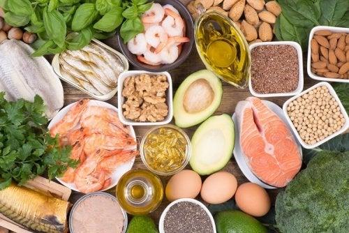 Alimentos ricos en ácidos grasos de tipo Omega