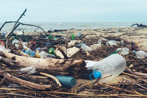Plástico contaminante en playa