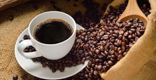 Los granos de café tostados o el café molido tienen un aroma fuerte que puede eliminar el olor a humedad con cierta facilidad.