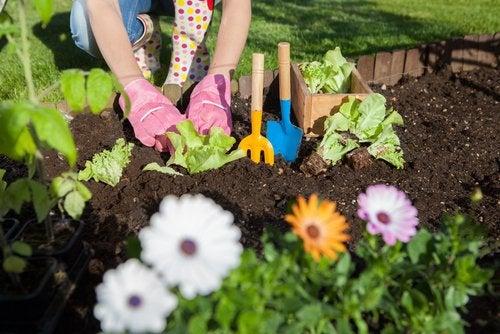 No te prives de los beneficios de la jardinería.