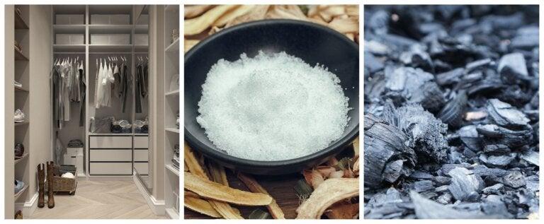 ¿Cómo eliminar malos olores en lugares cerrados con estos 2 ingredientes?