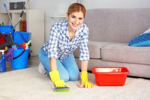 Existen diferentes productos para limpiar tus alfombras.