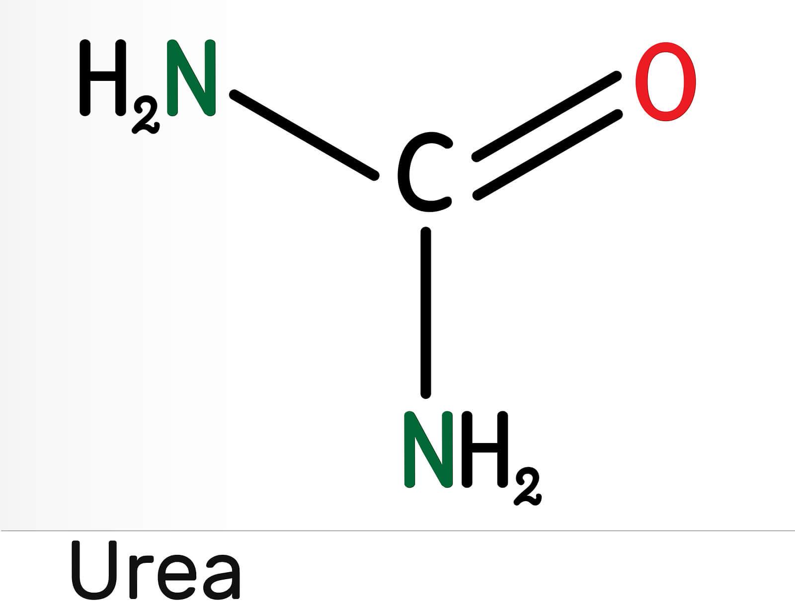 Molécula de la urea.