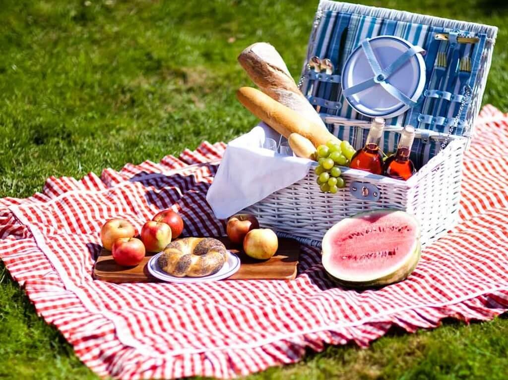 picnic-aire-libre