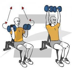 press arnold con mancuernas para fortalecer los hombros