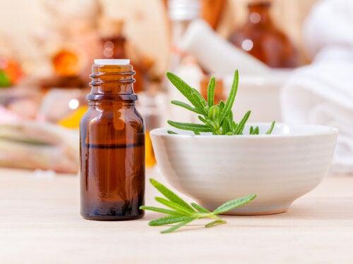 Embellece tu cabello con 5 remedios con romero