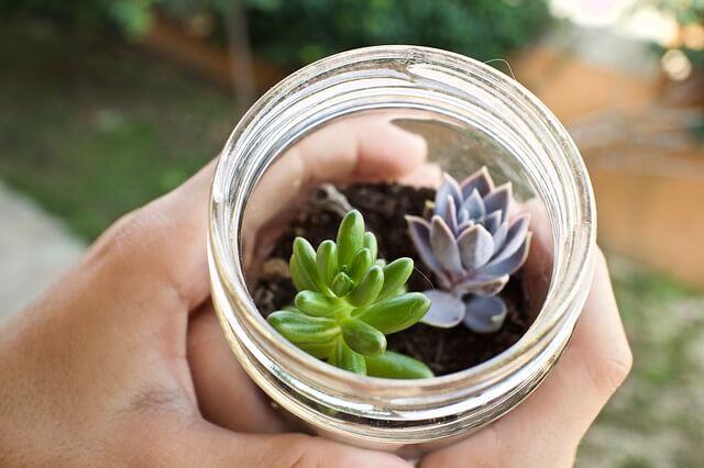 Para decorar un jardín pequeño puedes utilizar materiales reciclados.