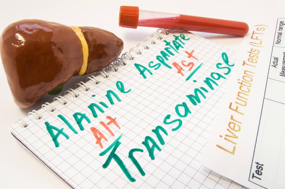 Transaminasas altas: qué indican, causas y tratamiento