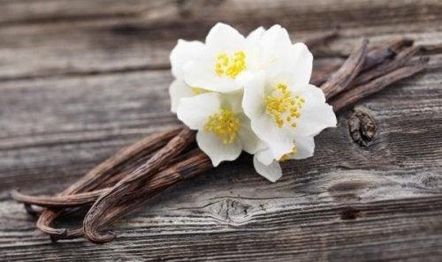 La esencia de vainilla natural es uno de los mejores remedios caseros para eliminar el olor a humedad de muchos espacios de la casa.