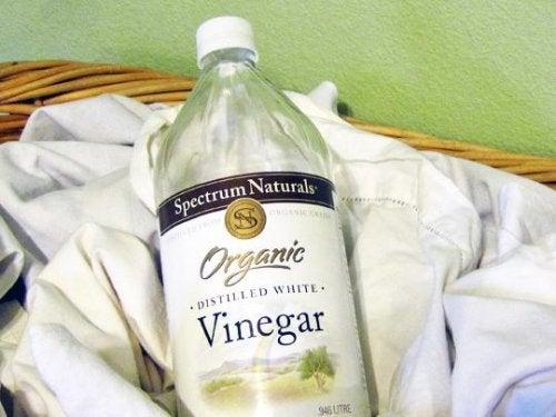 Botella de vinagre blanco