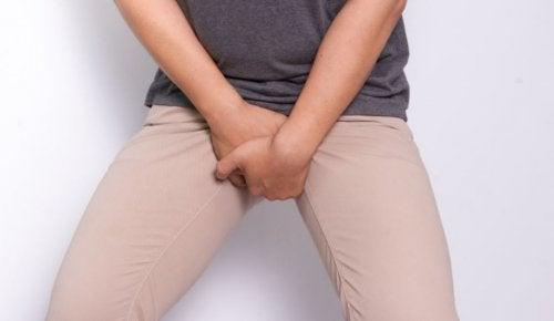 el pene erecto fluctúa