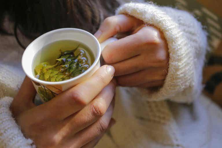 3 infusiones caseras para disfrutar en tus meriendas