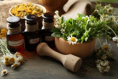 Aprende los mejores beneficios de utilizar medicina natural ...