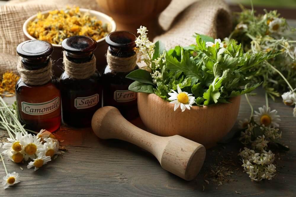 Aprende los mejores beneficios de utilizar medicina natural