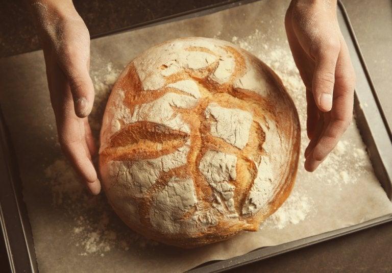 ¿Cómo hacer un pan sin amasado y sin gluten?