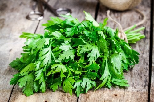 Cómo combatir la caspa con alimentos curativos cosechados en casa.