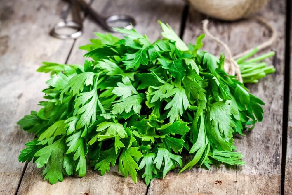 5 lociones herbales para combatir la caspa