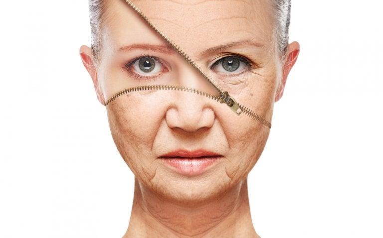 Dieta para prevenir el envejecimiento, incluye los siguientes nutrientes