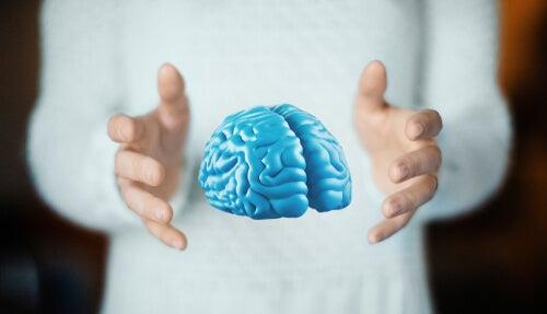 Efectos secundarios de un trasplante de cabeza