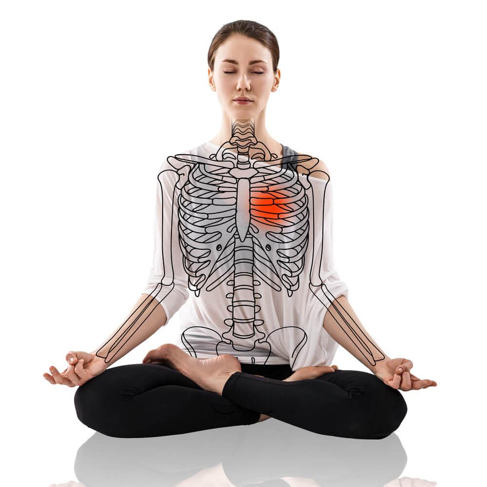 La anatomía del yoga – Mejor con Salud