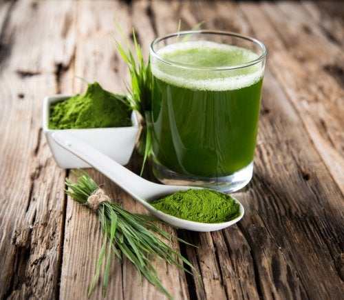 La chlorella, un remedio natural muy efectivo