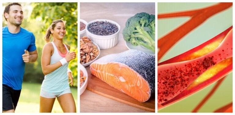 Cómo cuidar la salud arterial: 6 hábitos saludables