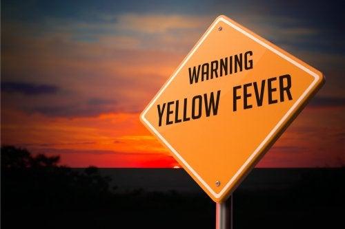 Alternativas para aliviar los síntomas de la fiebre amarilla